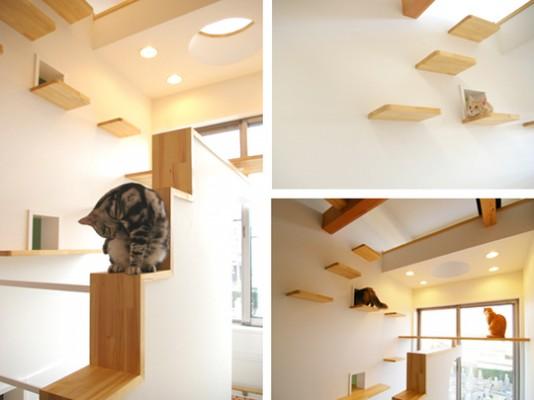 Kuća dizajnirana specijalno za mačke